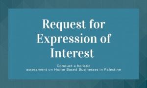 ERoI for the Home-Based Businesses Assessment