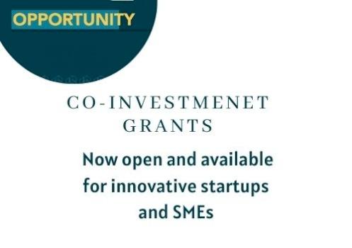 Co-Investment Grants Program
